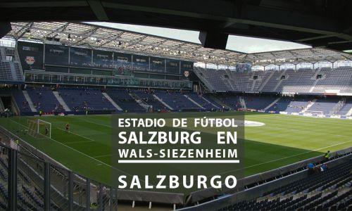 Jury for the ideas competition for the Salzburg Football Stadium in Wals-Siezenheim. Salzburg, Austria